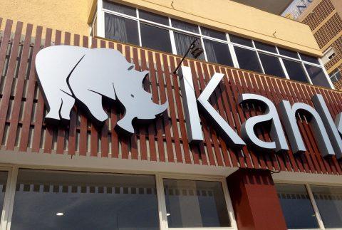 Kankana Import Corte de Poliestireno