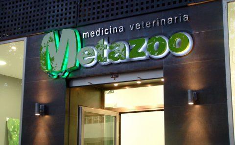 Decoración fachada Clínica Veterinaria Metazoo